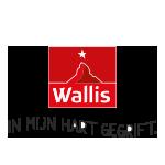 Aspen_Flex_Logo-Wallis