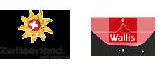 Aspen_Flex_Logo-Zwitserland-Wallis